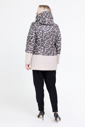 Куртка темний леопард молоко В 777 2514