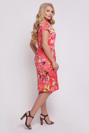 Платье Нота  596